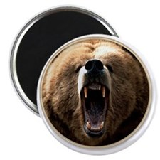 yule bear Magnet