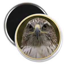 yule hawk Magnet