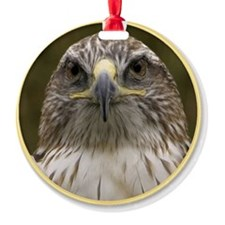 yule hawk Ornament