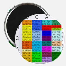 srs-aminoacids1 Magnet