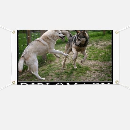 Diplomacy Banner