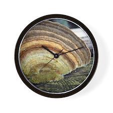 browns copy Wall Clock