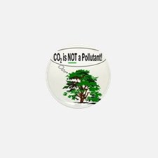 co2isnotapollutant10x10 Mini Button
