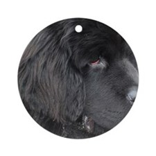 Puppy Profile Round Ornament