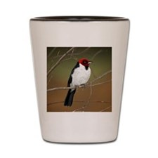 Red-capped Cardinal Shot Glass