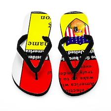 AFTER_ELECTION_FINAL Flip Flops