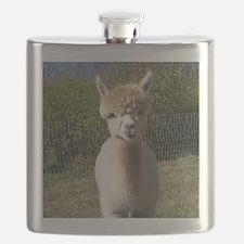 Peach closeup Flask