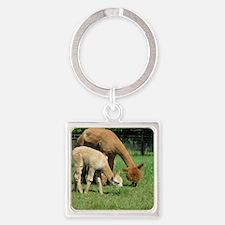 Momma  Me Alpaca  Cria Square Keychain