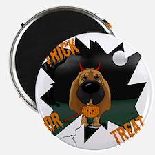 BloodhoundHalloweenShirt1 Magnet