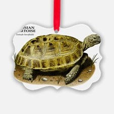 Russian Tortoise Ornament