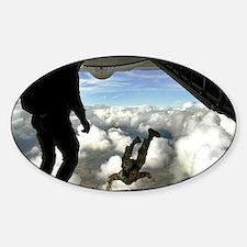 USAF PJ LFP Sticker (Oval)