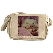 BabyFerret11x11-DBArtPanels1 Messenger Bag