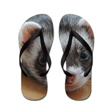 Ferret-01-11x11-DBArtPanels1 Flip Flops