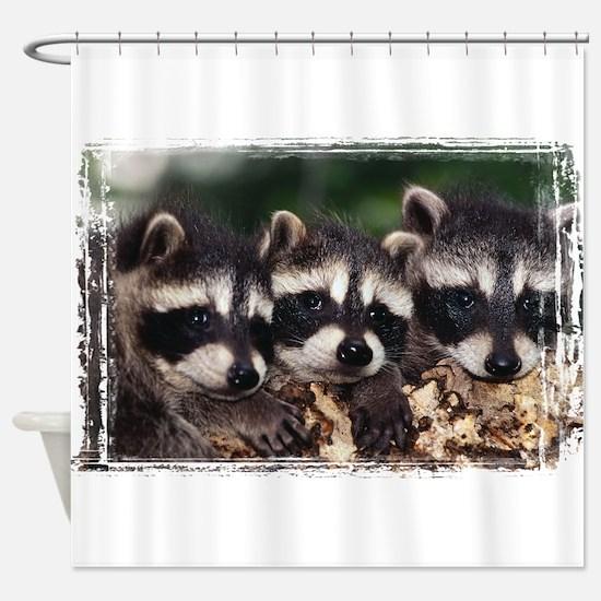 3 Raccoons Shower Curtain