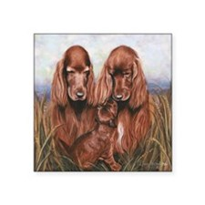 "Irish_Setter_Dogs Square Sticker 3"" x 3"""