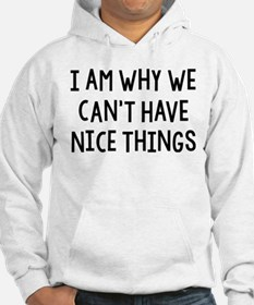 I Am Why We Can't Have Nice Things Hoodie