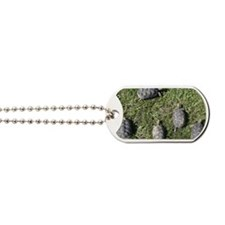 AerialShot Dog Tags