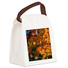 fallcolorcard Canvas Lunch Bag