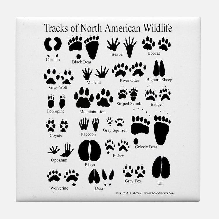 Animal Tracks Guide Tile Coaster