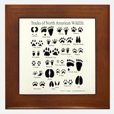 Animal Tracks Guide Framed Tile