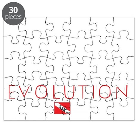 2-Evolution Puzzle