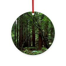Muir Woods Ornament (Round)