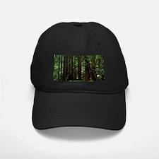 Muir Woods Baseball Hat