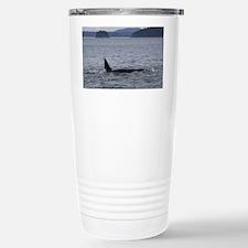 IMG_3588 Stainless Steel Travel Mug