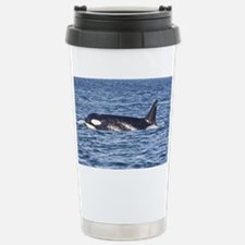 IMG_9350 Stainless Steel Travel Mug