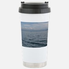 IMG_9951 Stainless Steel Travel Mug
