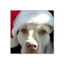 """2-christmas lola Front Square Sticker 3"""" x 3"""""""
