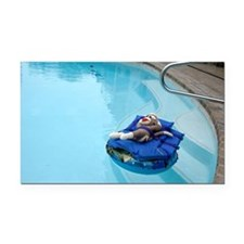 2-pool Rectangle Car Magnet