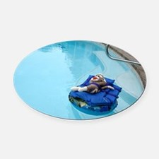2-pool Oval Car Magnet