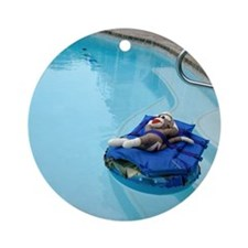 2-pool Round Ornament