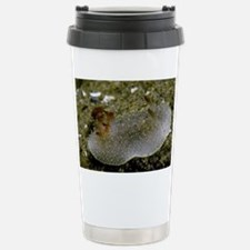 March Stainless Steel Travel Mug