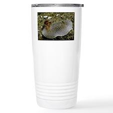 March Travel Mug