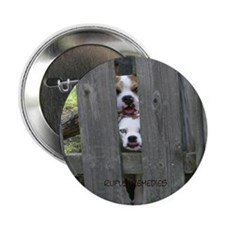 Boxers Fence Button