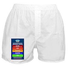 ADVISORY_SYSTEM_blueURL Boxer Shorts