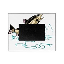 trout fish jumping Picture Frame