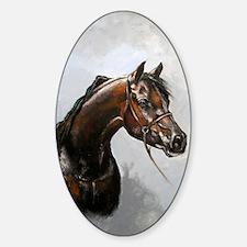 Black Arab Horse Portrait Sticker (Oval)