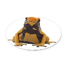 yellow tinctorius Oval Car Magnet