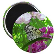 Paper Kite Butterfly and Orchids Magnet