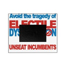 Electile Dysfunction 3 Picture Frame