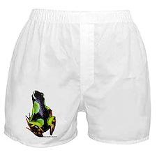 symmetrical baroni Boxer Shorts