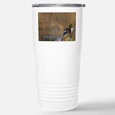 Washington. Male Mallard blasts Travel Mug