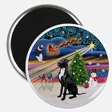 Xmas Magic - Great Dane (black-natural) Magnet