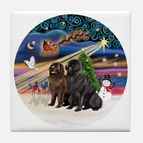 Xmas Magic - Newfoundland (TWO-Blk-Br Tile Coaster