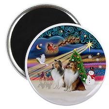 Xmas Magic - Shelties (TWO sable-white) Magnet
