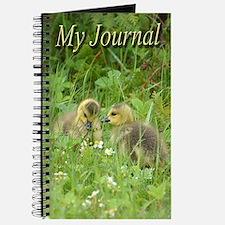Goslings In Clover Journal