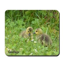 Goslings In Clover Mousepad